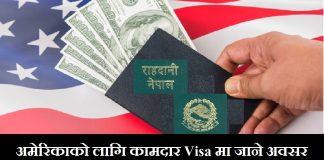 US Temporary Worker Visas