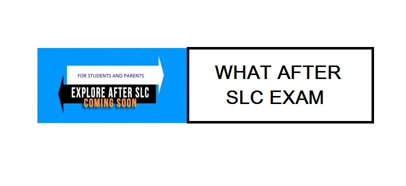 slc examinations