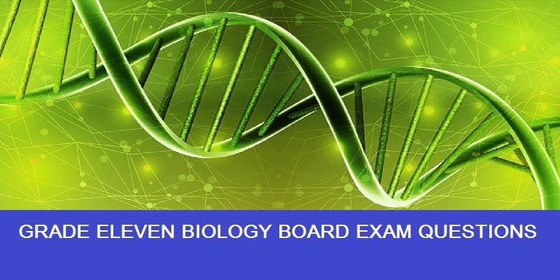 Grade 11 Biology Questions