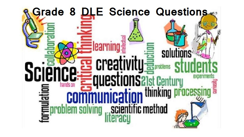 grade eight dle science questions