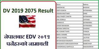 DV 2019 2075 Result