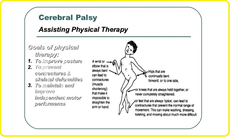 CP Child Physiotherapy Assessment