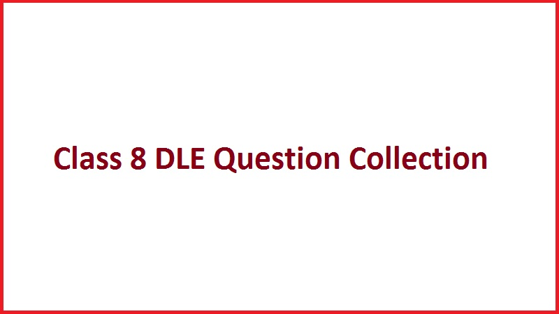 Class 8 DLE Question Collection