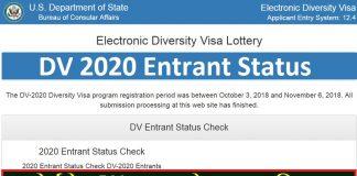 DV 2020 Entrant Status
