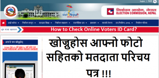 How to Check Online Voters ID Card?