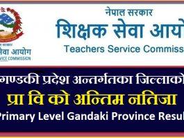 Primary Level Gandaki Province Result