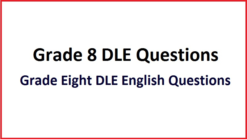 Grade Eight DLE English Questions