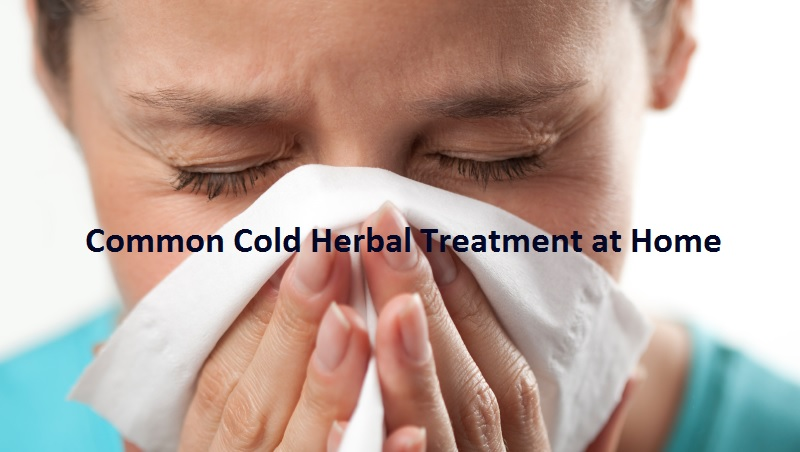 Common Cold Herbal Treatment at Home
