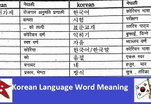 Korean Language Word Meaning