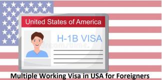 Multiple Working Visa in USA