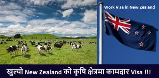Work Visa in New Zealand