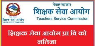 TSC Nepal Primary Result