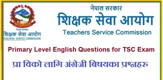 Primary Level English Questions
