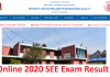 Online 2020 SEE Exam Result