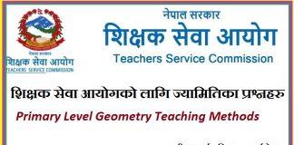 Primary Level Geometry Teaching Methods