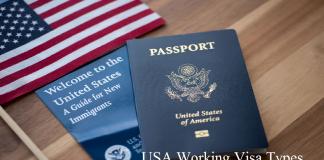USA Working Visa Types
