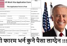 US Work Visa Application Form