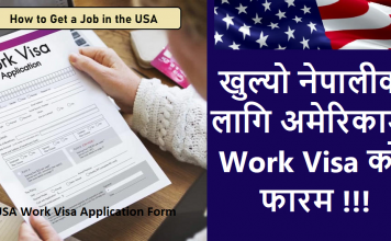 USA Work Visa Application Form