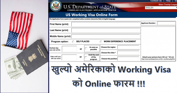 US Working Visa Online Form